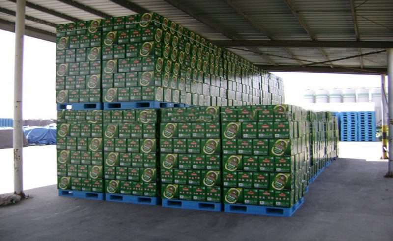 Plastic pallets for cartons of beers